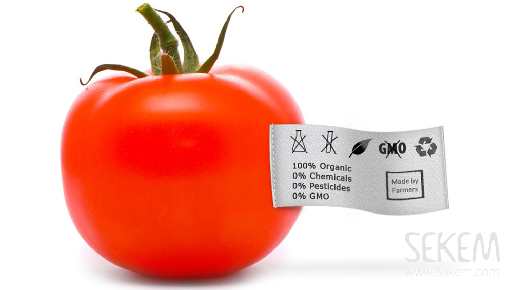 GMO isn´t the solution of the world hunger problem