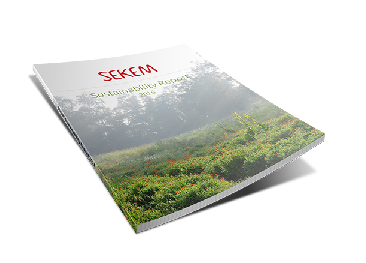Cover of SEKEMs Sustainability Report 2016