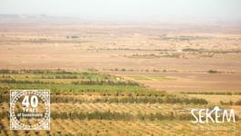 SEKEM is Combating Desertification in Egypt