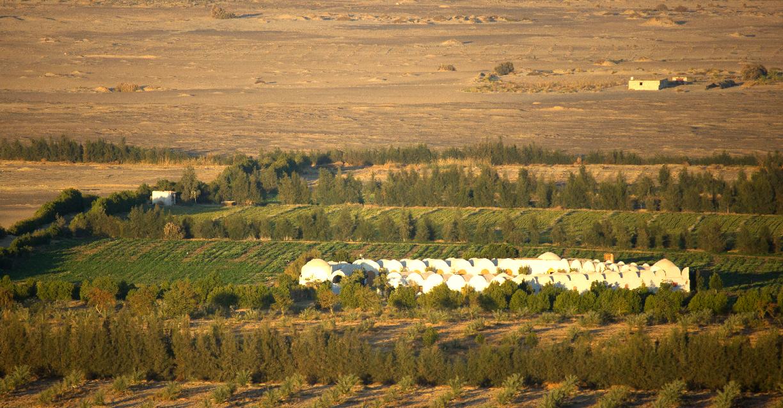 SEKEMs Desert Farm in Wahat El bahareya