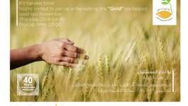 Invitation: Let's Seed the Future… Let's Harvest the Gold!