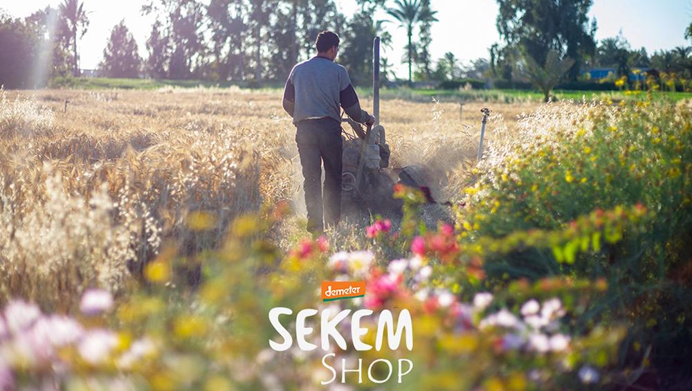 Frühlingsboten aus dem SEKEM Shop