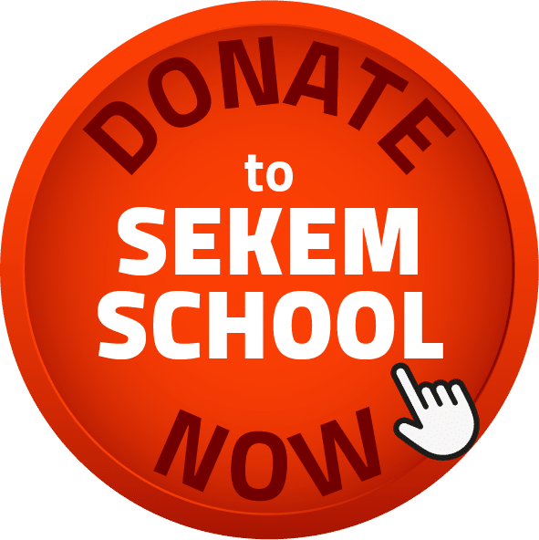 Donate to the SEKEM School Now