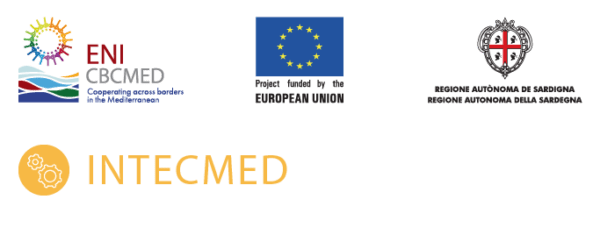 logo of European union and intecmed